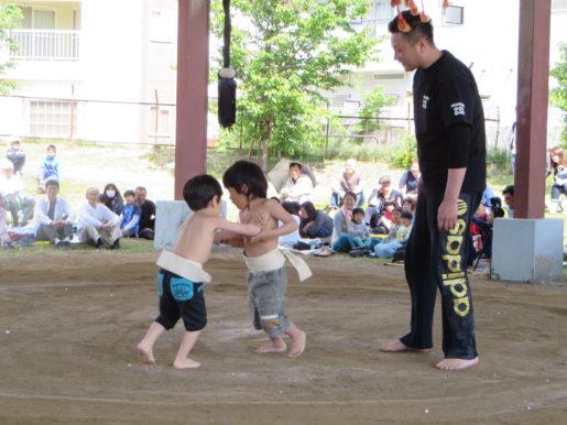 子どもの日相撲大会 021